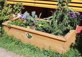 Ein Pflanzkasten Für Den Kindergarten Mullewapp Großostheim