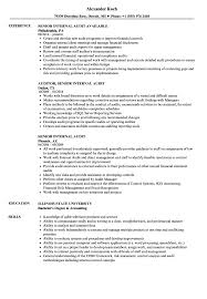 Senior Internal Audit Resume Samples Velvet Jobs