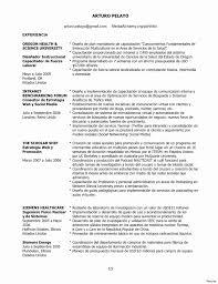 Examples Of Professional Profiles On Resumes Professional Profile Resume Examples Beautiful Template Nanny Sample 13