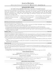Cfo Resume Free Executive Resume Nicetobeatyoutk 78