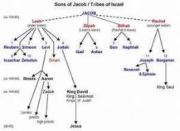 Noah To 12 Patriarchs Genealogy Chart Noah Abrahams