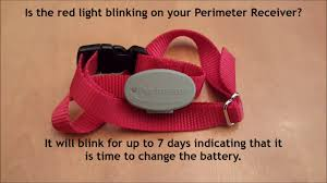 Red Blinking Light On Invisible Fence Collar Hidden Fence Of Mn How And When To Change The Battery In Your Perimeter Receiver Collar