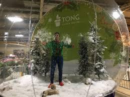 Tong Garden Centre Christmas Trees