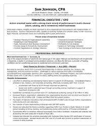 financial executive / CFO resume example