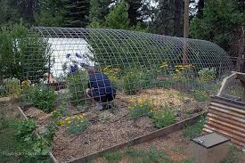 season extension roundup build your own hoophouse