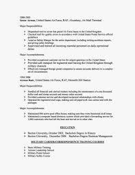 Computer Skills Resume Enchanting Cv Computer Skills Resume Examples Skill Basic Outlinecomputer Put