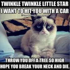 Grumpy kitty on Pinterest | Grumpy Cat, Cat and Meme via Relatably.com
