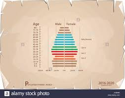 Baby Boomer Demographic Chart Population And Demography Population Pyramids Chart Or Age