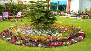 Beautiful Flower Bed Designs ideas | Plants for Flower beds