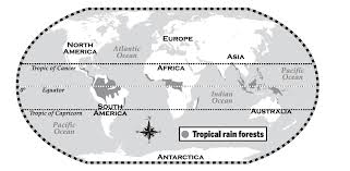 Africa's rain forests are found near the equator. Where Lies The Closest Tropical Rain Forest To Mainland Europe Travel Stack Exchange