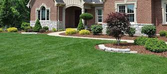Home Improvement Gardening & Lawn Care Landscaping