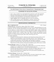 Performance Resume Template Enchanting Builder Resume Samples New Performance Resume Template Resume Sample