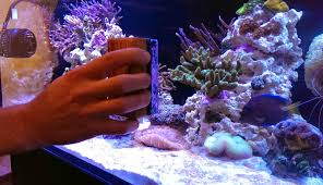 7 cool tools to clean your dirty reef tank