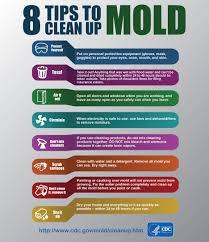 Mold   CDC