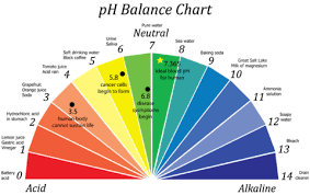 How Does Alkaline Water Affect Tds Invigorated Water