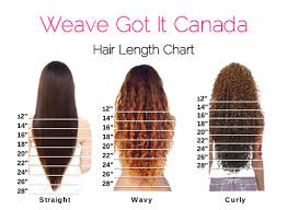 Lace Wig Hair Length Chart 100 Human Clip In Hair Extensions Weave Got It Canada