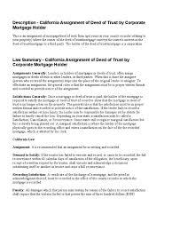 public service essay organization loan forgiveness