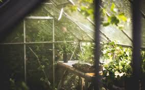 how to make a low cost eco friendly greenhouse