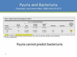 Urine Turbidity Chart Urine Culture Practices In The Icu Antibiotic Stewardship