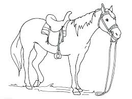 Horses Coloring Pictures Wild Horses Coloring Pages Free Printable