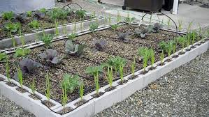 Small Picture The Best Cinder Block Garden Ideas for Your Sweet Home