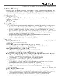 Resume Template Professional Summary Resume Examples For Software