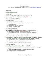 Culinary Internship Resume Examples Culinary Major Resume Example