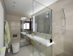 Partition For Bathroom Style Home Design Ideas Extraordinary Partition For Bathroom Style