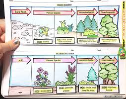 Primary Succession And Secondary Succession Venn Diagram Evolution Mrs Gs Classroom