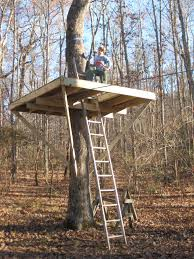 tree house plans for one tree. How To Build A Treehouse Around Single Tree Round Designs House Plans For One N