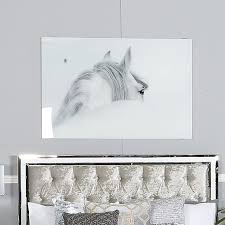 large white grey horse tempered glass wall art print