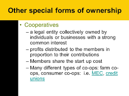 forms of ownership forms of business ownership ppt download