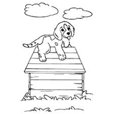 Labrador, beautiful dog, with complex patterns. Top 30 Free Printable Puppy Coloring Pages Online