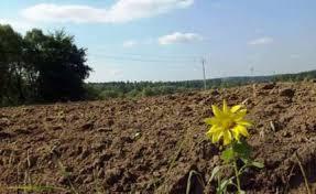 Землевладение и землепользование курсовая Организация учета земель в землевладении землепользовании теме курсовая рынок земли рента Представляет собой сложный системе платного создание основ