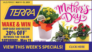 specialscur specials new at terraview all garden nursery