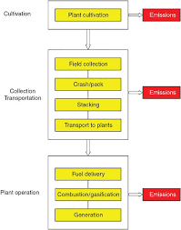 Plant Life Cycle Flow Chart Appendix C Life Cycle Assessment Of Biomass Power In China