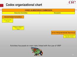 Veterinary Organizational Chart Ppt International Approach For Veterinary Medicinal