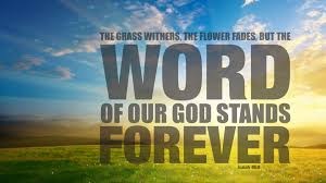 Word Of Nature Gods Word Is Vision That Guides Humanity In Truth Peace