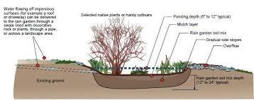 Small Picture Rain Gardens Chesapeake Stormwater Network