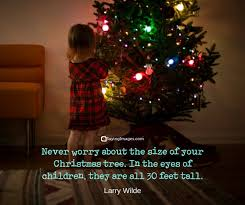 Christmas Lights Quotes Gorgeous Funny Christmas Quotes Sayings