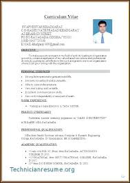 Professional Cv Template Word Download 9 Example Of Professional Curriculum Vitae Download Format Microsoft