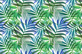 Pattern Stunning Tropical Pattern Jungle Palm Leaves Graphic Patterns Creative