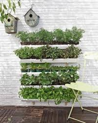 Small Picture Small herb garden plan