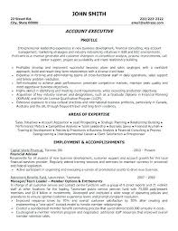 Account Manager Resume Sample Resume Account Executive Account Sales