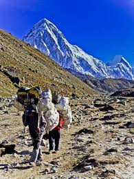 best travel mt everest images treks to photography of sherpa people mt everest
