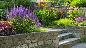 Landscape Design NaturEscape Inc Franklin Brentwood And - Home landscape design