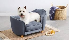 aldi releases mini sofa beds for dogs