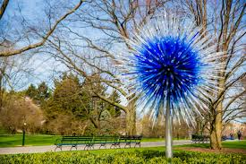 inside the most visually arresting art installation of the year 9 slides glass sculptor dale chihuly s new experience at the new york botanical garden