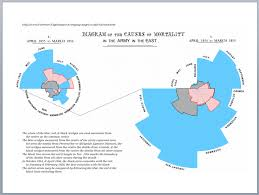 florence nightingale theory after crimea florence nightingale and slum clearance