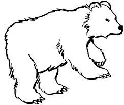 Zoo 179 Animals Printable Coloring Pages